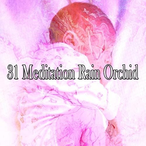 31 Meditation Rain Orchid