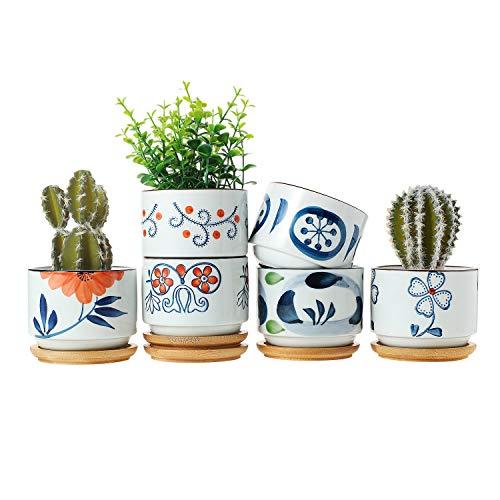 T4U Vasetti per Piantine Ceramica con Vassoio di bambù Set di 6, Piccola Vasi in Ceramica per Piante Grasse da Interno Giapponese Vasi Cactus per Succulente Piccoli