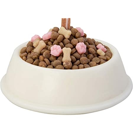 Spoof Dog Food Bowl Scented Candle for April Fools Day Gift for Your Dog Birthday