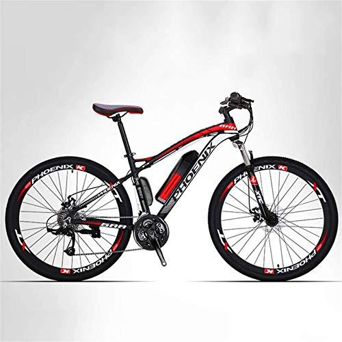 WJSWD Electric Bicycle
