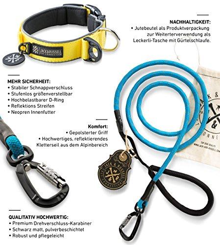 Hondenhalsband Set