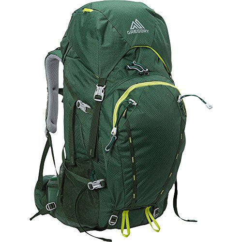 Gregory Mountain Wander 50 Kids Backpack