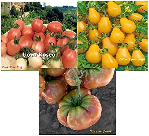 Tomate Noire de Crimée, pink Thaï Egg, Yellow Pearshaped, potager jardin ouvrier, pas cher
