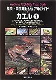 爬虫・両生類ビジュアルガイド カエル〈1〉ユーラシア大陸、アフリカ大陸とマダガスカル、オーストラリアと周辺の島々のカエル