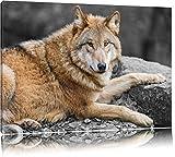 stolzer Wolf auf Stein schwarz/weiß auf Leinwand, XXL riesige Bilder fertig gerahmt mit Keilrahmen, Kunstdruck auf Wandbild mit Rahmen, günstiger als Gemälde oder Ölbild, kein Poster oder Plakat