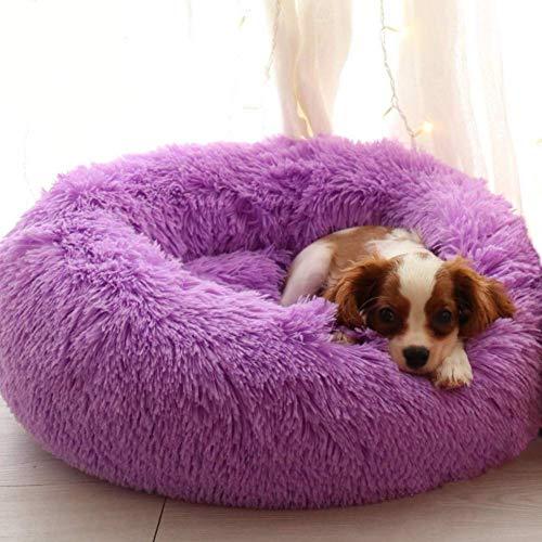 Segle Hundekörbchen Tierbett Hundebett Haustier Katzenbett Hundesofa Katzensofa mit Kissen -Weichem Waschbar Betten für Mittelgroße/Großer Hund-110x110cm-Lila