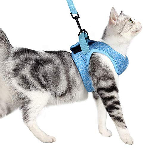 猫用ハーネス 胴輪 安全首輪 猫リード ペット用ベーシック首輪 子猫 子犬 小型犬 散歩 歩行補助 引っ張り防止 脱走防止 超軽量50 g未満で