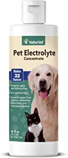 NaturVet – Pet Electrolyte Concentrate for Dogs & Cats – Plus Breath Aid – 16 oz – Supports Proper Fluid Balance, Replenishes Electrolytes & Maintains Hydration – Great for Agility & Hunting Dogs
