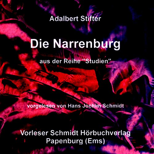 Die Narrenburg audiobook cover art