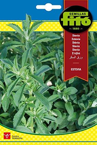 Semillas Fitó 8840 - Estevia