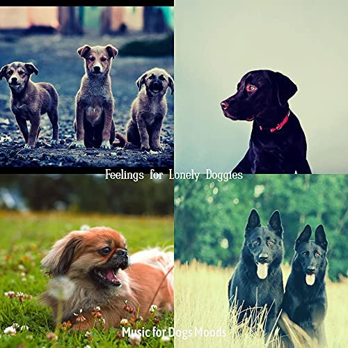 Music for Dogs Moods