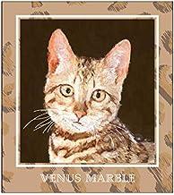 Venus Marble (ヴィーナスマーブル) アイシャドウキャットシリーズ (ベンガルキャット)