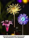 Hardoll Solar Lights for Outdoor Home Garden LED Decoration Waterproof Lamp Dandelion, Lily, Sun Flower Stake Lights (Pack of 1)