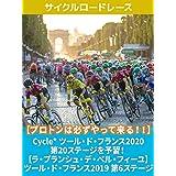 【プロトンは必ずやって来る!!】Cycle* ツール・ド・フランス2020 第20ステージを予習! 【ラ・プランシュ・デ・ベル・フィーユ】 ツール・ド・フランス2019 第6ステージ