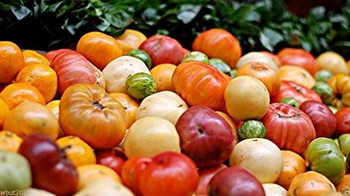 tomates Heirloom Seeds, (Tous Trier Mix) Pollinisation libre - l'agriculture biologique! (100)