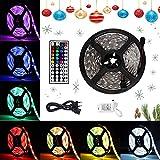 Lychee Tira LED decoracion 5M 5050RGB con 300 LED,Control Remoto de 44 Claves y Adaptador de Alimentación 12V 5A,para Navidad, Halloween, Bodas, Techos, Balcones, Cocinas y Fiestas