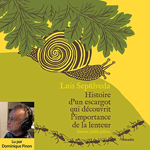 Couverture de Histoire d'un escargot qui découvrit l'importance de la lenteur