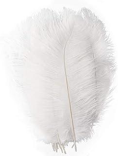 HIUHIU 10 pièces/Lot de Cheveux d'autruche Blanc Naturel Artisanat Costume de Carnaval 65-70cm Parti Famille Plume décorat...