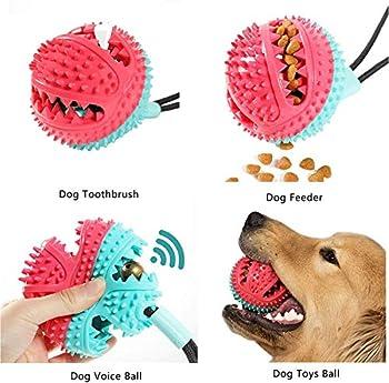 Paddsun Jouet pour chien avec ventouse, brosse à dents, brosse à dents pour chien, balle distributeur de friandises pour chien, chiot, nettoyage des dents avec fonction de soins dentaires pour chien