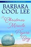 Free eBook - A Christmas Miracle in Pajaro Bay