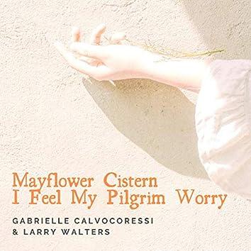 Mayflower Cistern (I Feel My Pilgrim Worry)
