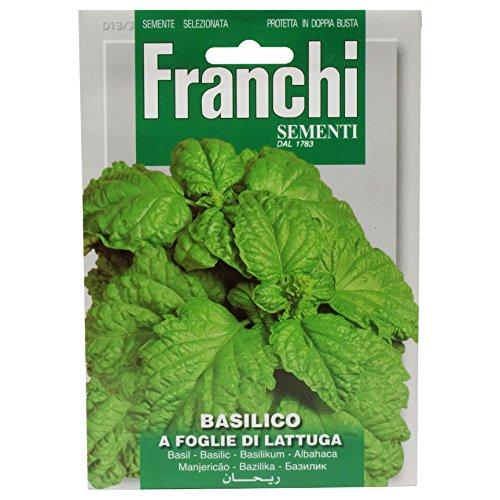 Seeds of Italy Ltd Basilic à feuille de laitue