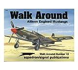 Allison Engined Mustangs - Walk Around No. 13