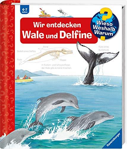Wir entdecken Wale und Delfine (Wieso? Weshalb? Warum?, 41)