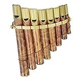 Panflöte Pfeife aus Bambus mit Mundstück -ideal für Einsteiger, Blas Instrument Handarbeit Musik Rhythmus Klang Percussion Kinder Spielzeug (Klein)