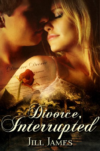 Book: Divorce, Interrupted (The Lake Willowbee Series) by Jill James