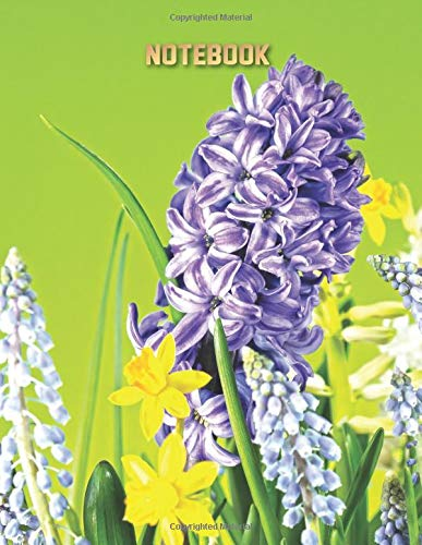 Hyacinth Journal Multipurpose Notebook - Large (8.5 x 11 Composition Book, Diary) Flowers Cover