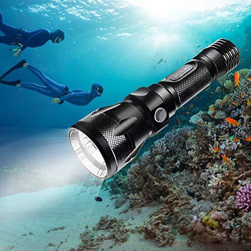 Bluefire Torcia Subacquea, Professionale Torcia per Immersione, 1200 Lumens XM-L2 LED Impermeabile Portatile Torcia Elettrica con Laccetto e Cordino