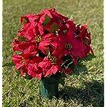 Deluxe-Red-Poinsettia-Cemetery-Vase-Arrangement