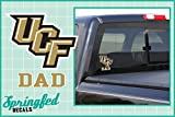 UCF Knights GOLD DAD w/STACKED UCF LOGO Vinyl Decal Central Florida Knights Car Window Sticker