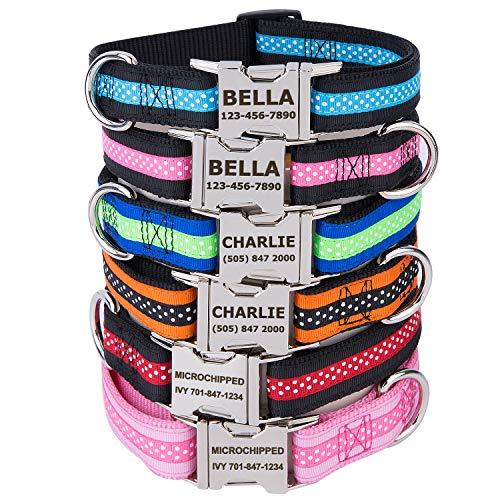 TagME Personalisierte Hundehalsbänder mit Name und Telefonnummer Eingraviert/Schnellverschluss-Metallschnalle/Mode-Tupfenmuster/Grün & Blau