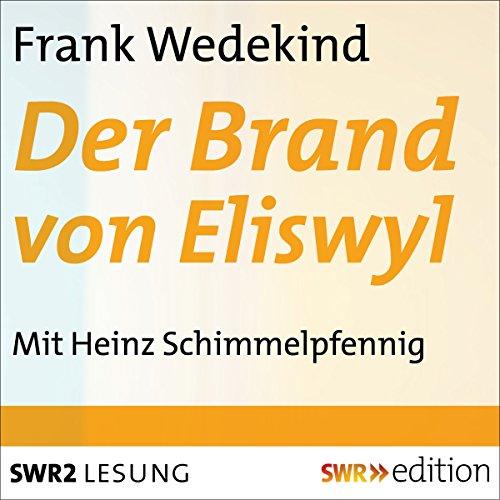 Der Brand von Eliswyl audiobook cover art