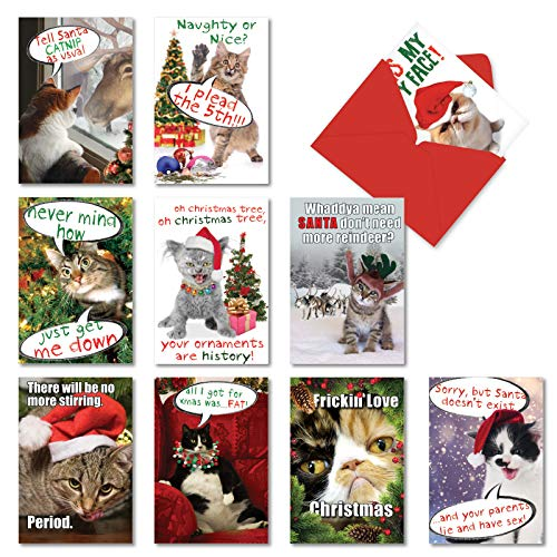 NobleWorks  10 Funny Assorted Christmas Cards Boxed  Happy Holiday Assortment Notecards with Envelopes  Petigreet CatMass A1254