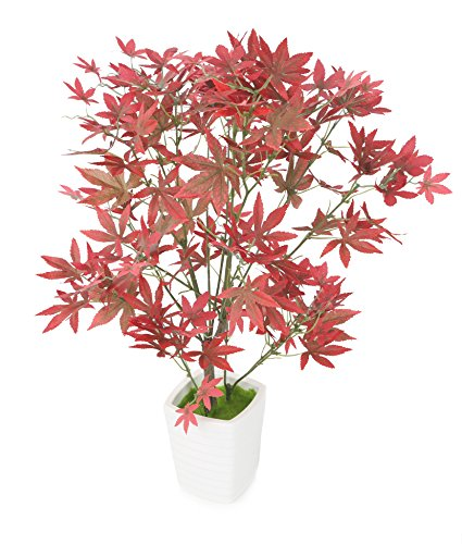 Closer to Nature Artificial 1ft 10' Variegated Red Japanese Maple Tree - Artificial Silk Plant and Tree Range