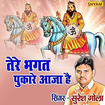 Tere Bhagat Pukare Aaja Hai