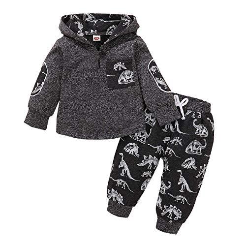 SANMIO 2Pcs Niños Ropa con Capucha Ropa Sudadera Top + Pantalones Bebés Chándal Conjuntos (Gris-Dinosaurio, 6-12 Meses)