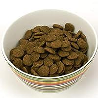 ナチュラルバランス Natural Balance ウルトラプレミアムポテト&ダックフォーミュラ お試し 犬 ドライフード