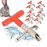 Cikonielf 10 Piezas de Conejo bebederos automáticos de pezón Bebedero...