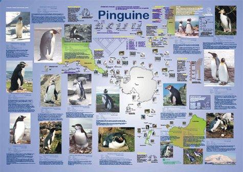 Pinguine (Planet-Poster-Box)