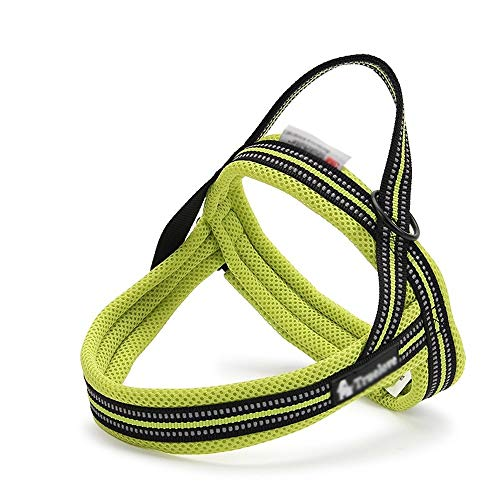 Ouzhoub Arbeitshundeweste Jeden Tag No Pull Reflective Nylon Hundegeschirr mit Front-Clip, Trail Running, Walking, Wandern, All-Day Wear No More Ziehen, Zerren (Color : Green)