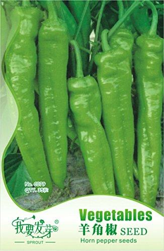 1 Original Pack, 35 graines / paquet, vert Big Long Horn Poivron Légumes Bulgarian Graines Terrain Miracle LMP005