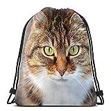 Bozal de gato animal doméstico personalizado con cordón bolsas de hombro bolsa de gimnasio, mochila de viaje, gimnasio ligero para hombre y mujer, 16 x 14 pulgadas