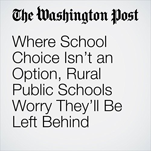 Where School Choice Isn't an Option, Rural Public Schools Worry They'll Be Left Behind copertina