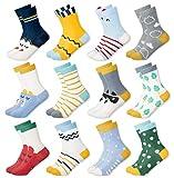 MC.TAM® Calcetines de Colores Medias Para Niños Niñas 12 Pares 90% Algodón Oeko Tex® Standard 100, 23-26, 12 pares FV005