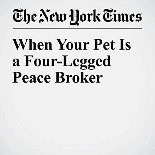 When Your Pet Is a Four-Legged Peace Broker cover art