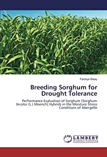 Breeding Sorghum for Drought Tolerance: Performance Evaluation of Sorghum [Sorghum bicolor (L.) Moench] Hybrids in the Moisture Stress Conditions of Abergelle